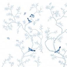 BIRDS TALKS IN THE TREES