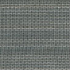 Eastern grey
